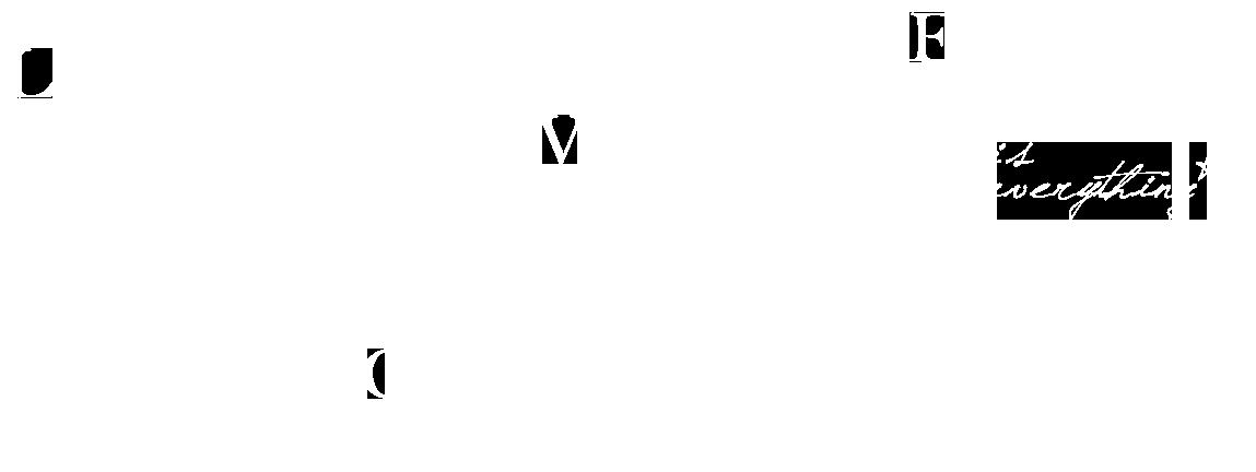 David Levesque et l'arc en ciel du voyage